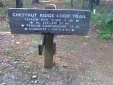 Chestnut Ridge Loop Trail