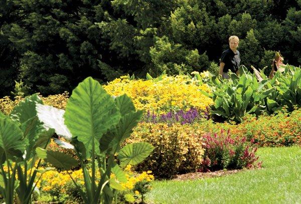 VWCC Arboretum