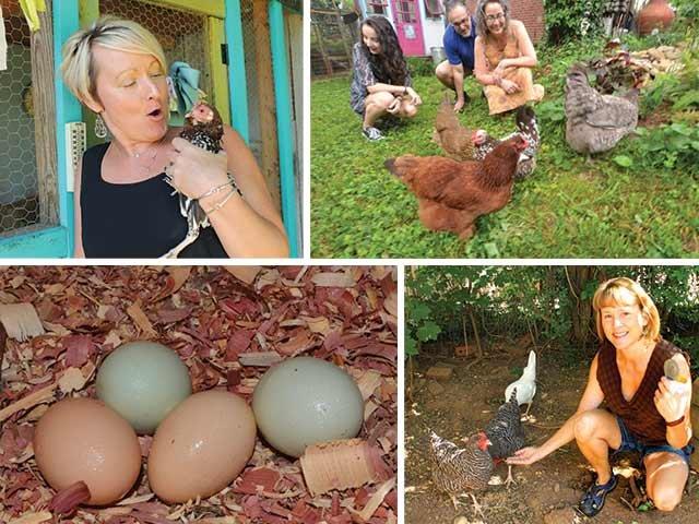 Chickens!.jpg