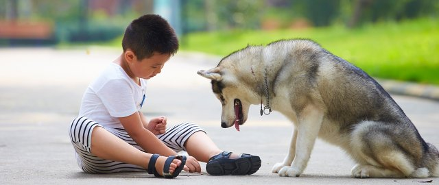 boy and dog.jpg