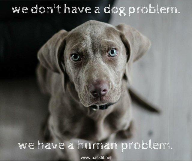 human problem pic.jpg