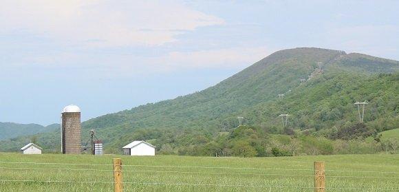 Catawba ValleyC.jpg
