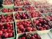 Optimized-cherries1.jpg