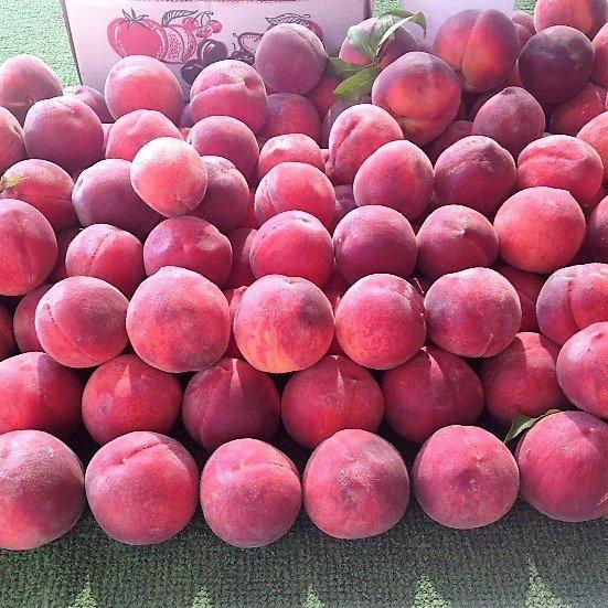 Optimized-peaches.jpg