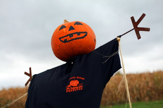 MG_Pumpkin_paint_head.jpg