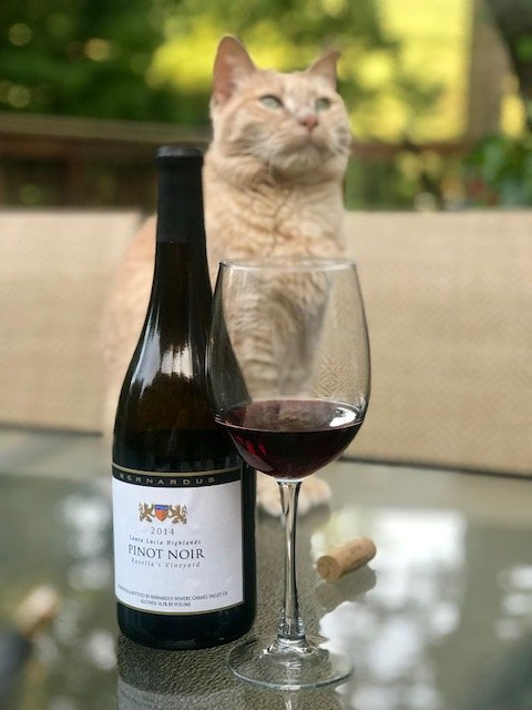 wine pinot noir.jpg