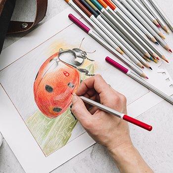 Teen Naturalistic Drawing_tile.jpg