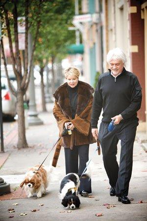 dog-walking-2.jpg