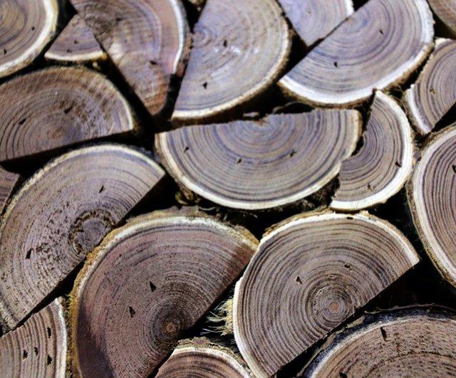 heart-wood.jpg