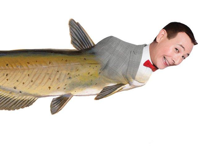 Gossipman Pee Wee Fish